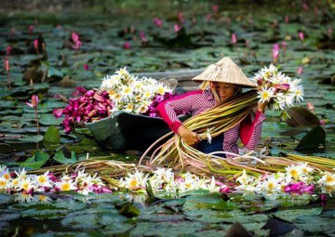 Kinh nghiệm du lịch miền Tây từ Sài Gòn cho người đi lần đầu